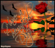 a beautiful day image | Beautiful Day Sunset Rose Reflections Glitter Graphic Comment