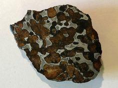 Steineisen Meteorit Sericho (Pallasit) 2016 Kenya  铁陨石