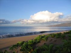 My personal condo vacation rental on the island of MAUI, Hawaii