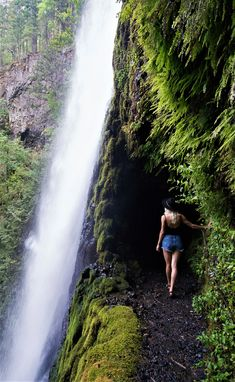 Oregon Travel & Outdoors Eagle Creek Falls near Portland, Oregon 5 Tips for Mom Entrepreneurs: How t Oregon Road Trip, Oregon Trail, Portland Oregon, Oregon Coast Hikes, Oregon Hiking, Travel Portland, Utah Hikes, Colorado Hiking, Central Oregon