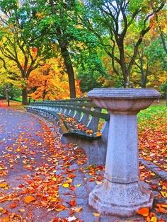 Autumn in Central Park, New York