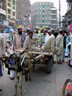 Donkey cart in Peshawer, Pakistan  - Explore the World with Travel Nerd Nici, one Country at a Time. http://travelnerdnici.com