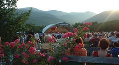 In 2016, Stowe Performing Arts Celebrates 40 years with their signature Music in the Meadow series.  Stowe Performing Arts is a non-profit organization with a volunteers dedicated to bringing high quality performances  to the Stowe community and surrounding areas.  http://stowelocal.com/music-in-the-meadow/
