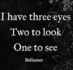 I have three eyes. Two to look and one to see.