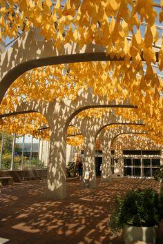 Baldaquin at Meijer Gardens, Grand Rapids, MI 2010 - Mark Rumsey