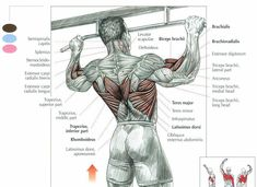 THE PULL-UP GUIDE: NAILING YOUR FIRST STRICT PULL-UP (PART 1 OF 2)