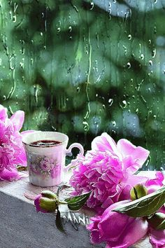 GIF by Mani Ivanov. Discover all images by Mani Ivanov. Morning Rain, Good Morning Good Night, Good Morning Images, Coffee Gif, Coffee Love, Coffee Barista, Flowers Gif, Exotic Flowers, Rain Flowers