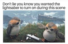 I actually didn't! I was worried for the cute porg. Bet the cast wished that happened