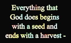 you are the seed, God has given u a gift to use for His glory.  He promises that if it is given, He will provide.  No need to fear or doubt!  With the faith the size of a mustard seed, you can move mountains!