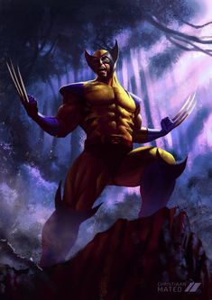 Wolverine Wallpaper HD for Android Wolverine Images, Wolverine Art, Logan Wolverine, Wolverine Animal, Wolverine Claws, Wolverine Movie, Iron Man Wallpaper, Batman Wallpaper, Animal Wallpaper