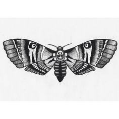 Moth+Tattoo+Designs   Hawk moth tattoo
