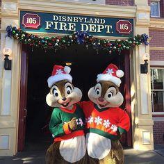 Happy holidays from the nuttiest duo around! #DisneyHolidays #Disneyland (photo: @thedisneylandtwins)