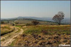 Holy Cross Mountains/Góry Świętokrzyskie, view of the Kraiński Grzbiet/Ridge by Tomasso from Panoramio.