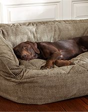 Orvis--the best dog beds ever!
