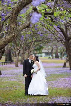 If You Love The Jacaranda Trees In Bloom Book Your Wedding