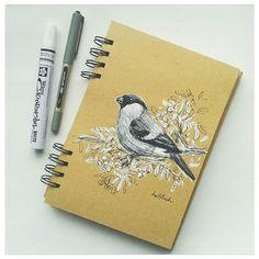 Bullfinch in black and white ink #inktober  #inktober2016 #sketch #sketchbook #drawing #bird #bullfinch #nature #ink #blackandwhiteink #artwork #illustration