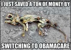 "I guess it's that new, more affordable ObamaCarePlan called the ""just walk it off "" plan, didn't cover his medical needs!"