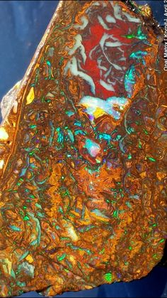 Opal Matrix nut (half} from the Koroit Opal mining area near Cunnamulla , Queensland , Australia . Minerals And Gemstones, Crystals Minerals, Rocks And Minerals, Jelly Opal, Types Of Opals, Rock Collection, Rough Opal, Queensland Australia, Agates
