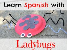 """""""Learn Spanish with Ladybugs"""" series starts with COUNTING and the color RED in Spanish.  Great Pre-K ladybug activities for learning Spanish."""