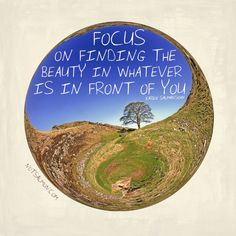 Focus on finding the beauty in whatever is in front of you