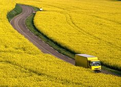 lets take a drive through yellow fields.