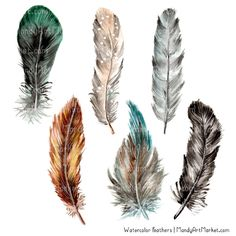Items similar to Watercolor Feathers Clipart - Watercolour Feathers, Hand Painted Feathers, Feather Clipart, Clipart Feathers, Tribal Clipart on Etsy Watercolor Feather, Feather Painting, Watercolour, Watercolor Paintings, Feather Clip Art, Tribal Feather, Wrap Around Wrist Tattoos, Tribal Paint, Tribal Turtle Tattoos