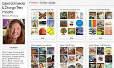 Article - Interest in Pinterest