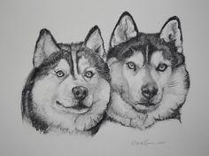 Husky drawings from wordpress