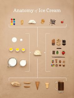 The Anatomy of Ice Cream by Small Batch Creative