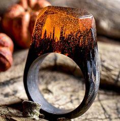 Questi anelli in legno sono magici: dentro c'è un mondo in miniatura
