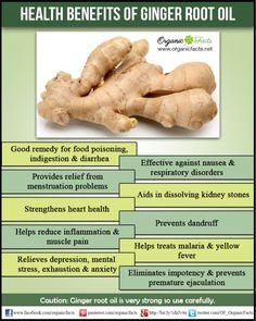Health Benefits of Ginger Root Oil   Organic Facts