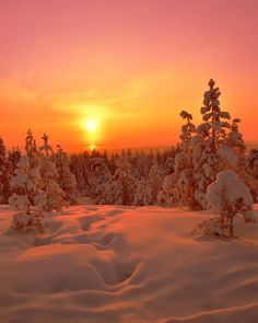 This is Lapland 💕❄ Romance in the tones of arctic sunsets. Missed you all, had a little getaway, cant wait to see all you have been up… Lapland Finland, Miss You All, Cant Wait, Sunsets, Banner, Dragon, Romance, Country, Inspiration