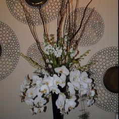 Draping White Phalaenopsis Orchids, White Dendrobium Orchids, Stock and Curly Willow