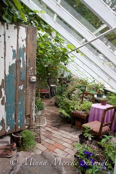 """Receive excellent recommendations on """"greenhouse plans design"""". They are actually available for you on our website. Porch Greenhouse, Lean To Greenhouse, Greenhouse Plans, Greenhouse Gardening, Greenhouse Wedding, White Clematis, Victorian Greenhouses, Dream Garden, Home And Garden"""