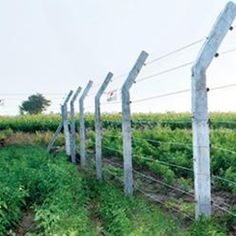 Electrical Fencing Solutions