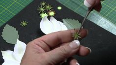 Making Paper Flowers -- Clematis