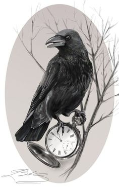 Turn this bird on against the original bird on the sleeve tattoo – tatoo Crow Art, Raven Art, Bird Art, Best Sleeve Tattoos, Body Art Tattoos, Tattoo Drawings, Fox Tattoos, Tree Tattoos, Deer Tattoo