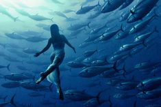 In this breathtaking underwater photograph by Kurt Arrigo, we see a woman freediving (i.e., no breathing aid) with a school of tuna fish. Th...