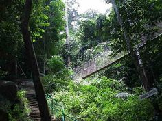 Pangkor Suspension Bridge, a Jambatan Gantung in the jungle near Pasir Bogak