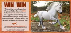 It's Competition Time! Win a Copperfox Percival Model
