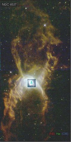 The Red Spider Planetary Nebula shows the complex structure that can result when a normal star becomes a white dwarf star. Officially tagged NGC 6537, this two-lobed symmetric nebula houses one of the hottest white dwarfs ever observed, probably as part of binary star system. Internal winds emanating from the central stars, shown in the central inset, have been measured in over 300 k/second. These hot winds expand the nebula, flow along the nebula's walls, and cause gas and dust to collide.