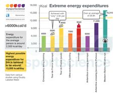 High energy expenditures, what it looks like