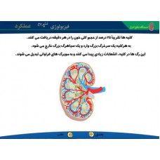 تبادل با محیط (2)  بسته ی مربوط به فصل تبادل با محیط  کتاب علوم سال اول متوسطه 1 (هفتم)   می باشد که به یادگیری دانش آموزان در زمینه ی موضوعاتی چون: گردش خون در شش ها، کلیه، بدن انسان - دستگاه دفع ادرار، نمودار سیستم تنفسی کمک می کند. - See more at: http://www.lrnshop.com/index.php?route=product/product&path=62_147_152&product_id=389#sthash.jHrDPSFG.dpuf
