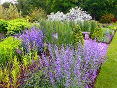 Парфюмерный набор, или Как создать в саду аромацветник / аромацветники / Знакомые растения могут не только услаждать взоры, но и лечить тело и душу, создавая правильное и позитивное настроение. Согласитесь, это веский повод, чтобы заложить в саду аромацветник. И даже не один!