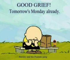 Charlie Mano Brown - Snoopy com frases dos Racionais MC's Peanuts Gang, Peanuts Cartoon, Charlie Brown And Snoopy, Charlie Brown Quotes, Peanuts Comics, Snoopy Love, Snoopy And Woodstock, Cute Quotes, Funny Quotes
