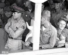Elvis never left Elvis Presley Army, Elvis Collectors, Baseball Cards