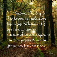 foto/ cita biblica