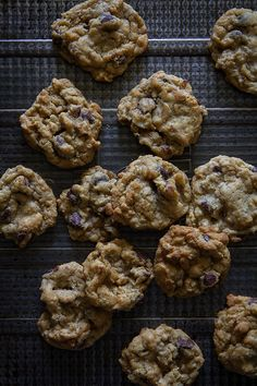 Crisp Oatmeal Chocolate Chip Cookie Bites | Bakers Royale