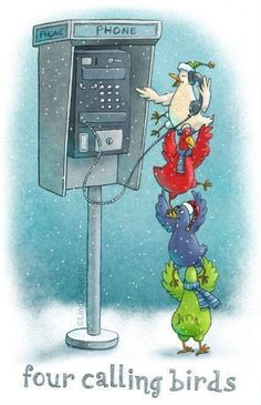 Four calling birds ♥ from the 12 days of Christmas song. On the day of Christmas my true love gave to me 4 calling birds Christmas Jokes, Christmas Cartoons, Christmas Fun, Christmas Cards, Holiday Fun, Christmas Pictures, Christmas Comics, Christmas Sayings, Xmas Jokes