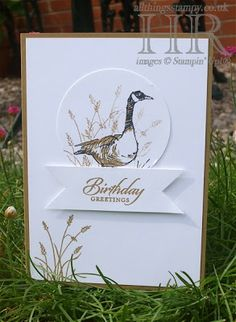 Masculine card with Wetlands